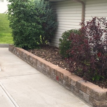 New concrete walk and stone retaining wall with mulch and tree detail