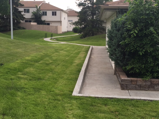 New stone retaining wall and concrete curb